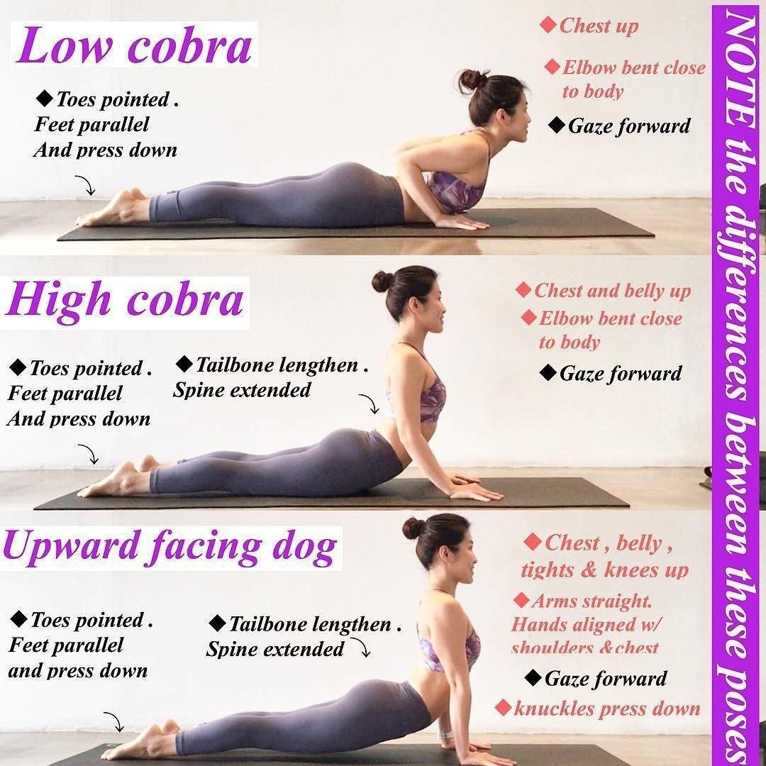 Pin by Yoga with Robyn on Yoga Back Bends | Yoga benefits ...