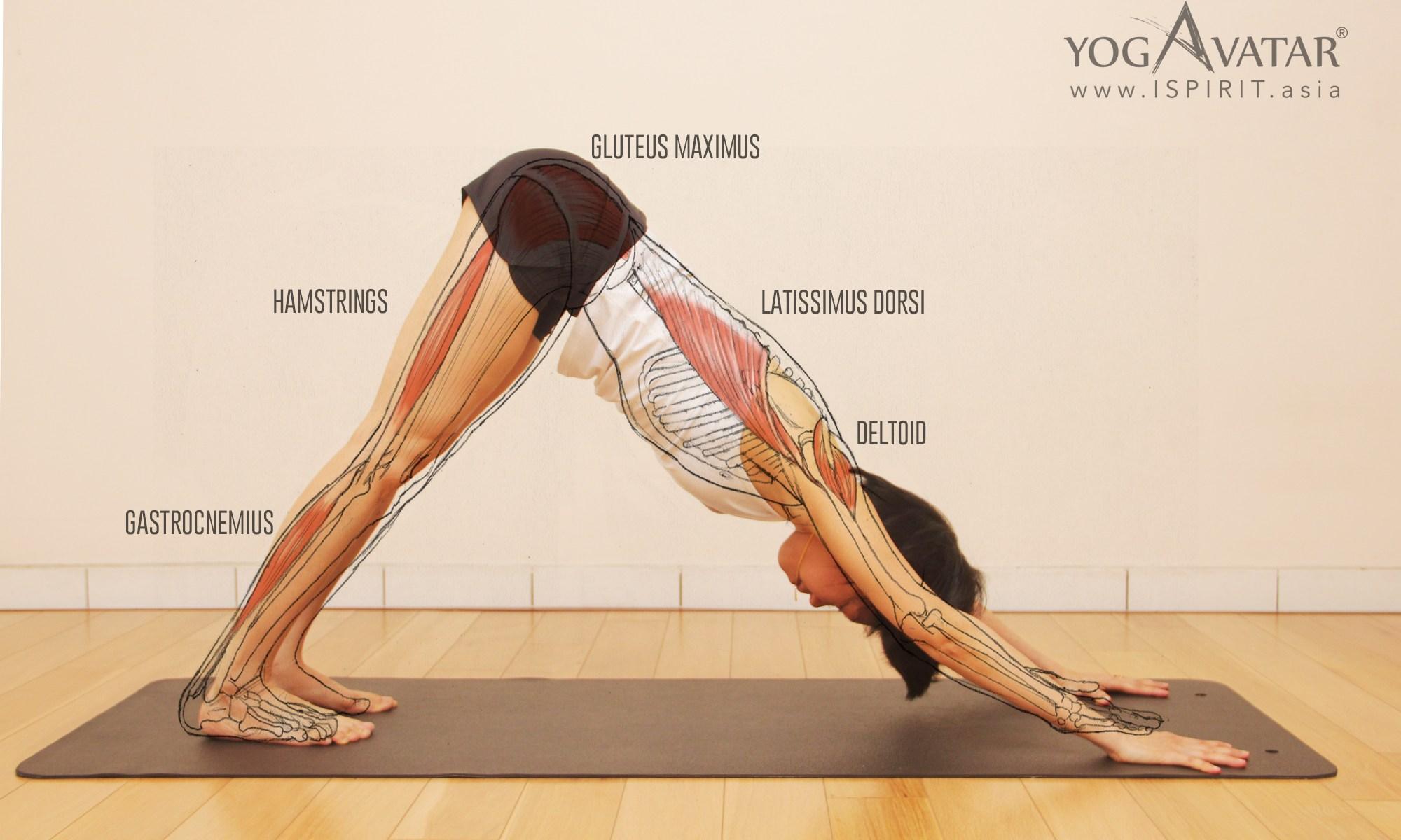 Yoga Q&A - ISPIRIT ASIA