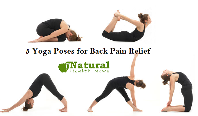 5 Yoga Poses for Back Pain Relief - Natural Health News