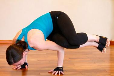 Parsva Bakasana (Side Crane Pose) - YogaPaws