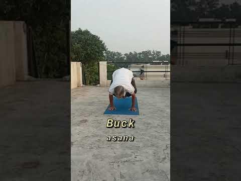 14 crow pose yoga adriene  yoga poses