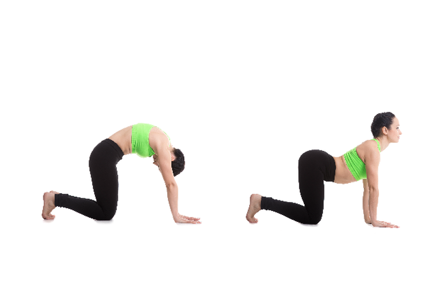 11 Yoga Poses For Back Pain Relief Slideshow The Active Times